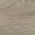 Light Elm, 6506